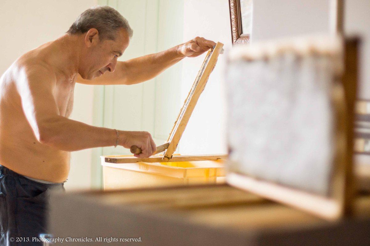 Honey making 14