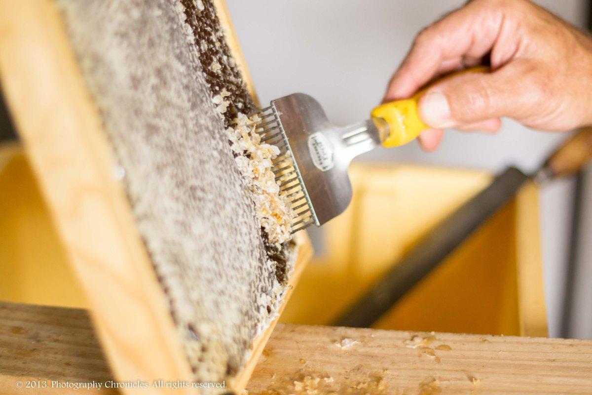 Honey making 15
