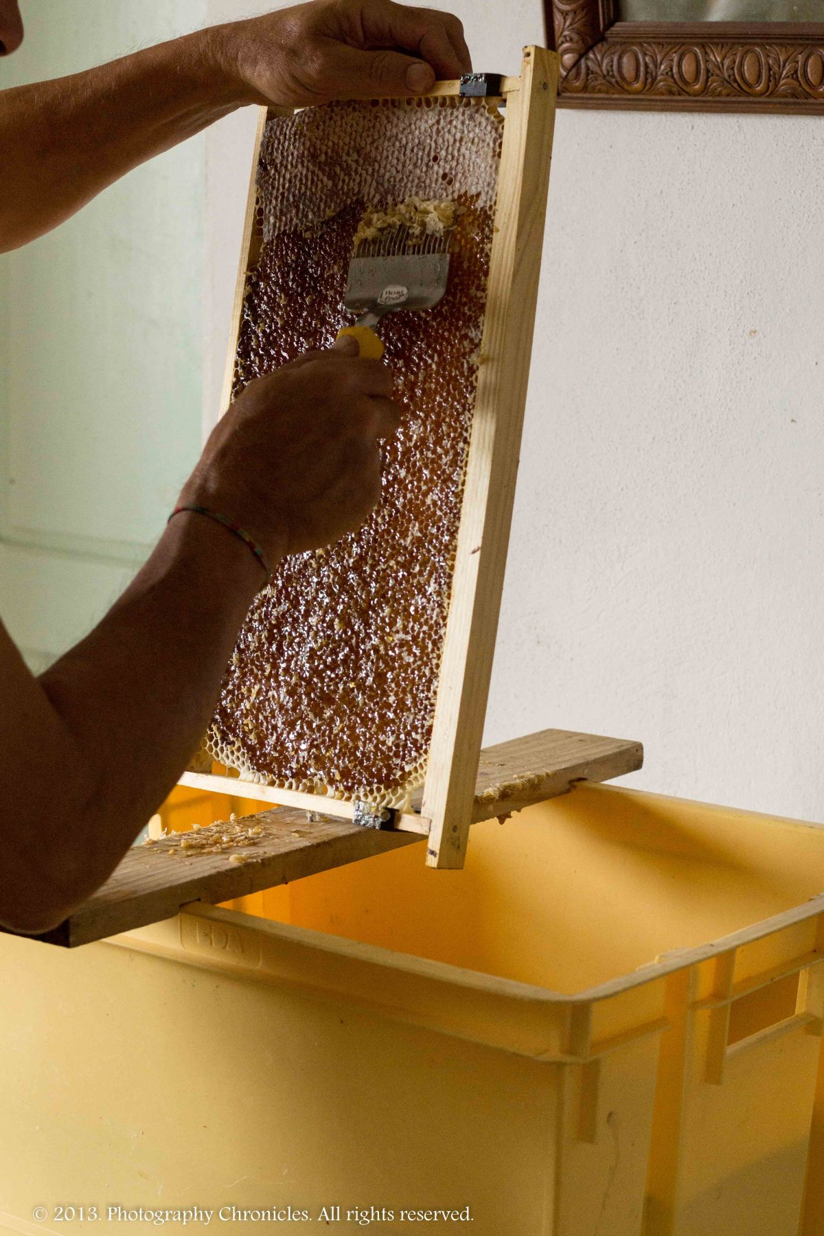 Honey making 1