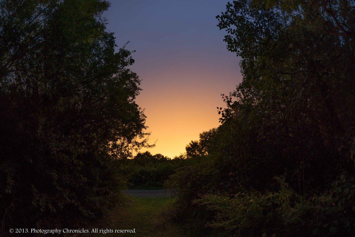 Night glow 2