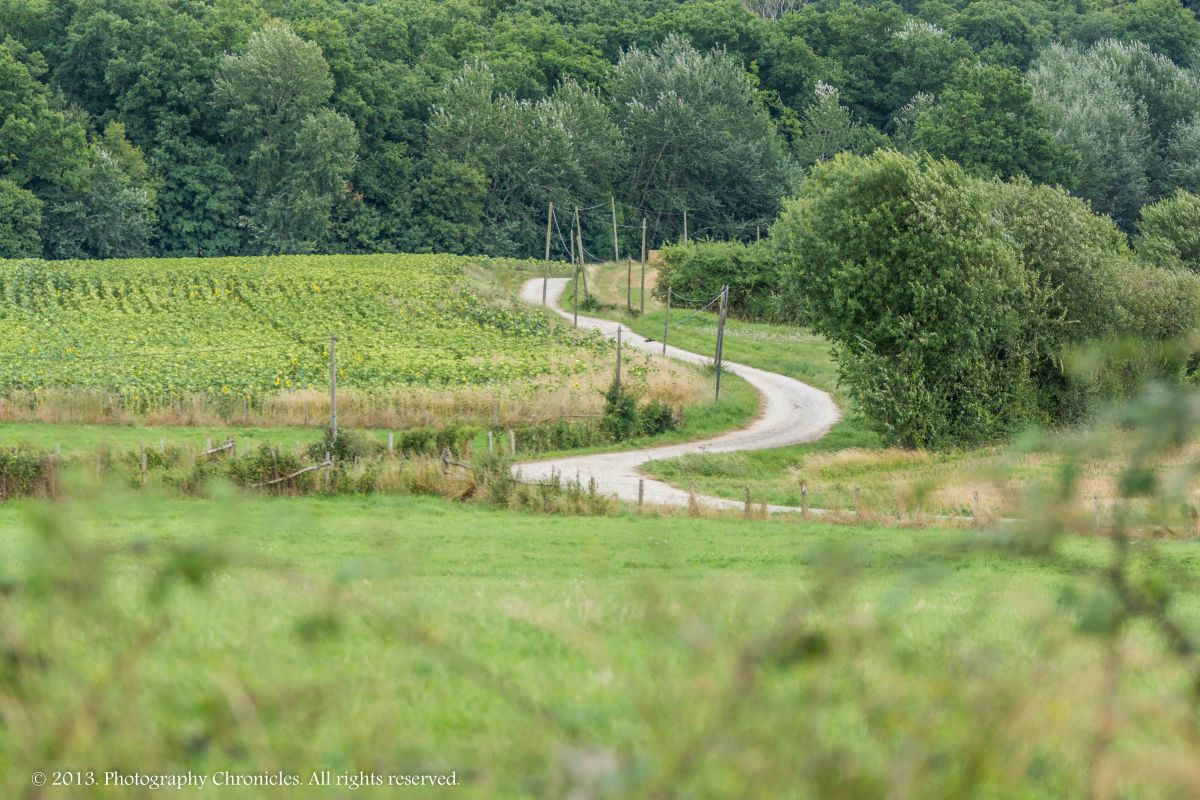 Winding countryside road