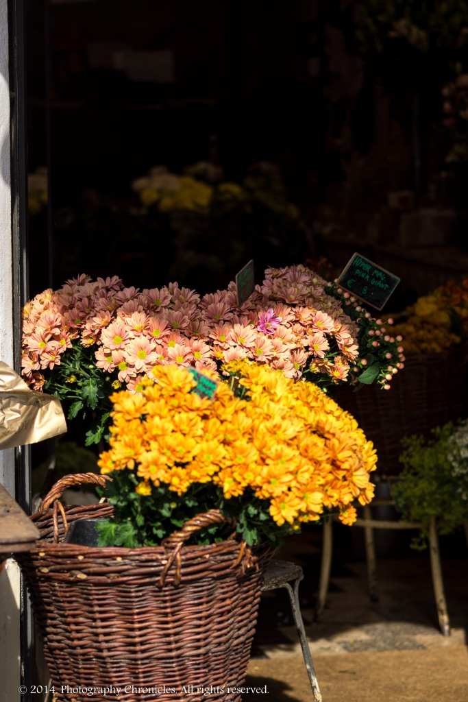 Flower Shop - Milano